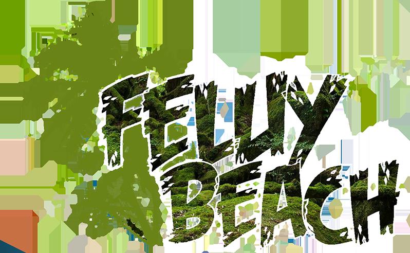 Feluy Beach